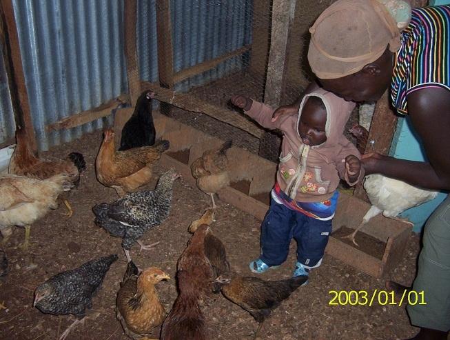 Kind im Hühnerstall